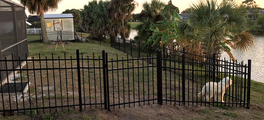 South Tampa Hyde Park Patch How A Sturdy Fence Could Keep